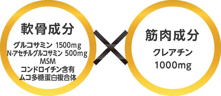 軟骨成分グルコサミン1500mg N-アセチルグルコサミン500mg MSM コンドロイチン含有 ムコ多糖充白複合体×筋肉成分クレアチン1000mg 軟骨成分として2種類のグルコサミンのダブルパワー グルコサミン・N-アセチルグルコサミンの同配合により軟骨成分であるが高分子のため吸収されにくいプロテオグリカン・コラーゲンの生成をスピーディーに促進します。唯一無二クレアチンとグルコサミン同時配合に関する特許クレアチンとグルコサミンを一緒に飲むことによる筋肉・関節機能の相乗作用に関し、特許が取得されています。