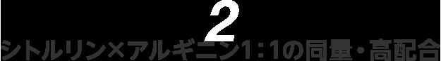 2シトルリン×アルギニン1:1の同量・高配合